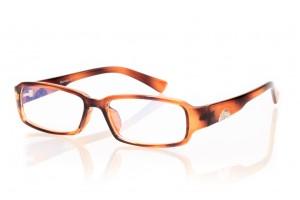 Очки для компьютера 5210