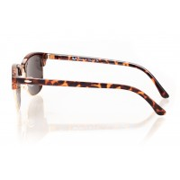Ray Ban Clubmaster 8295