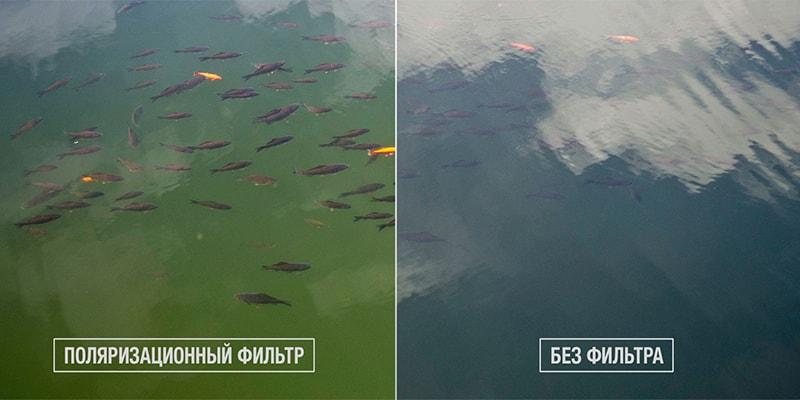 зачем нужны поляризационные очки на рыбалке фото